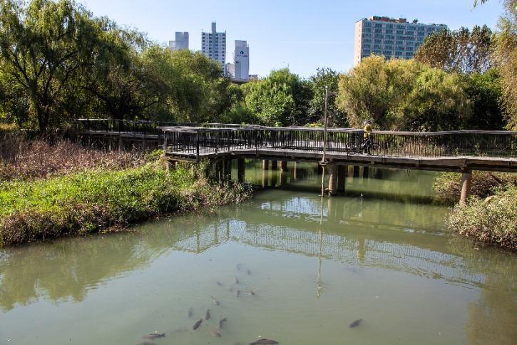 수변생태공원1.jpg