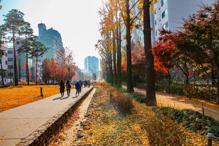 경의선 숲길3.jpg