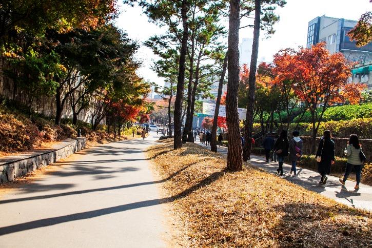 경의선 숲길45345 23.jpg
